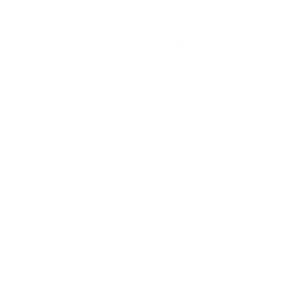 Bull Trailer Logotipo